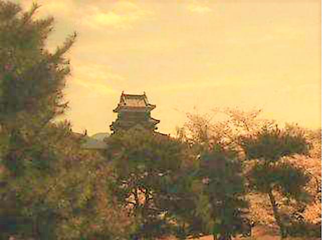 松本市天気ライブカメラ