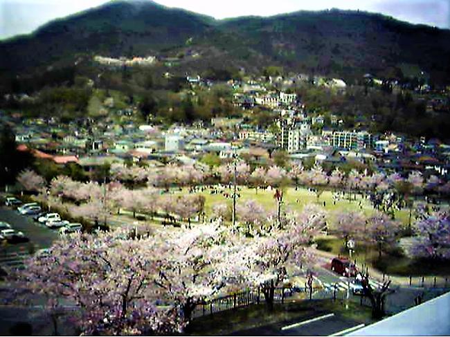 城山公園のライブカメラ