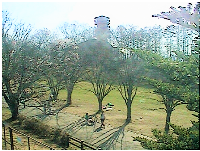 アルプス公園のライブカメラ