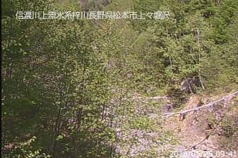 堀沢ライブカメラ
