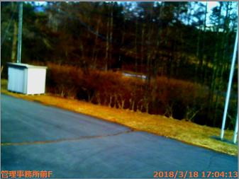 チェルトの森ライブカメラ