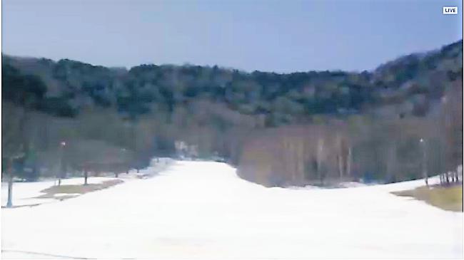 八千穂高原スキー場ライブカメラ