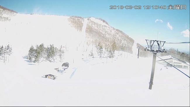 栂池高原スキー場(栂の森ゲレンデ)のライブカメラ