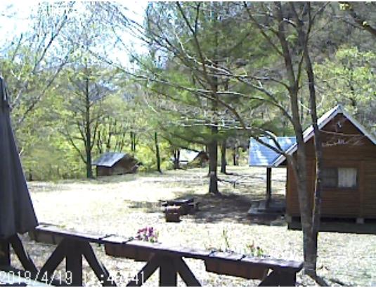 桑原オートキャンプ場のライブカメラ