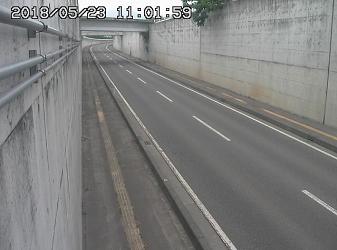 大島ライブカメラ道路