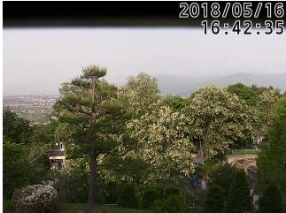 茶臼山動物園天気ライブカメラ