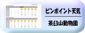 茶臼山動物園天気